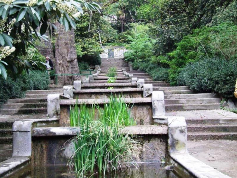 ботанический сад в ялте фото