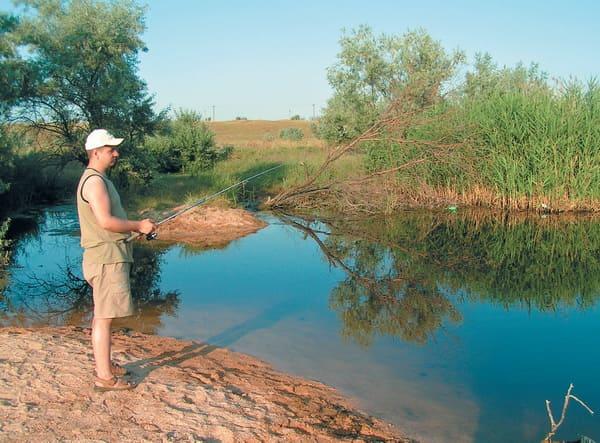 где ловить толстолобика в волгоградской области