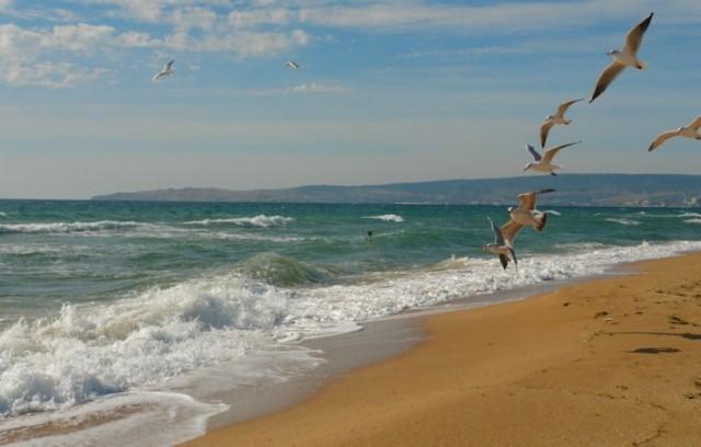 Золотой пляж в Феодосии фото