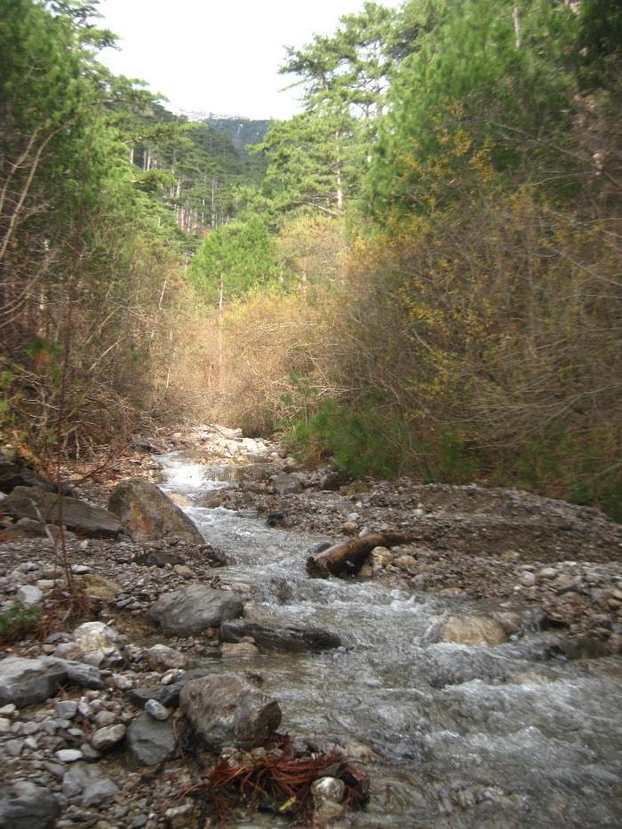 Река Бала в Уч-Коше