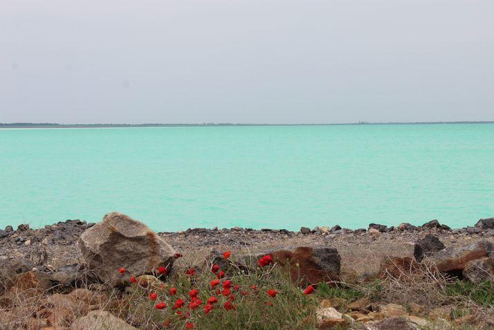 бирюзовое Красное озеро Крым